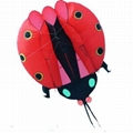3115 Lady bug kite