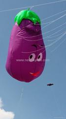 3292 Eggplant kite