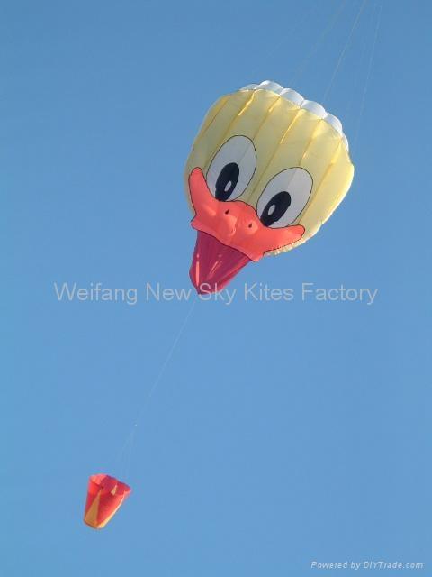 3167 Duck face ( 3x4 M )