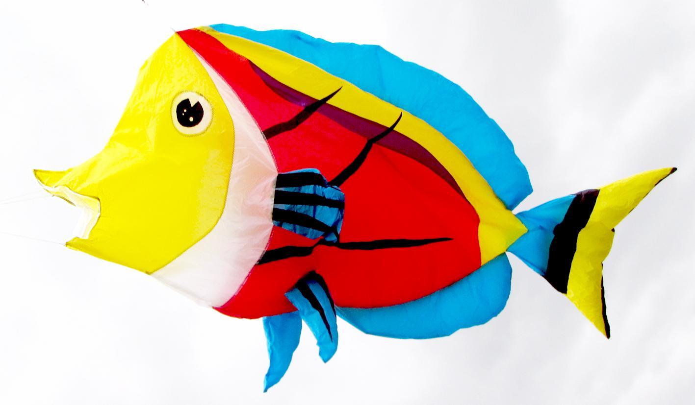 3210  热鱼 7