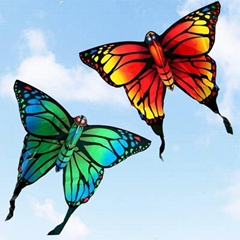 7010 蝴蝶