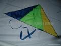 7003 三角风筝 2