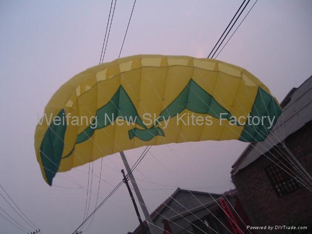 3007 Seagull Trainer Power Kite