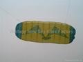 3007  海鷗版軟體特技風箏