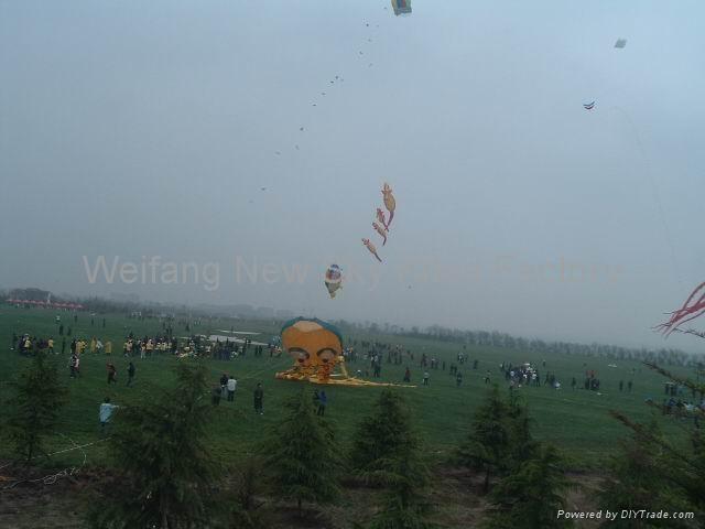 我们的2008风筝节