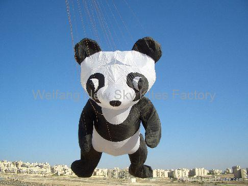 Our panda in Isreal