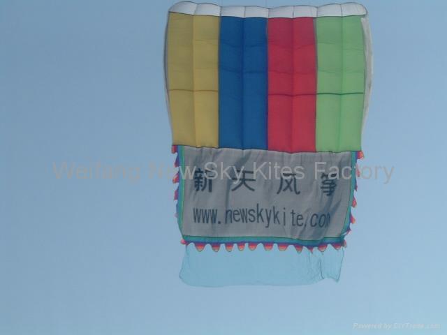3166 领航风筝 1