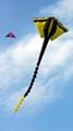 3236 魚怪風箏
