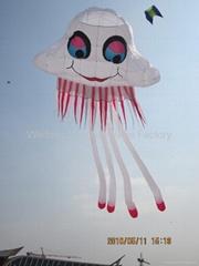 3228 Jellyfish