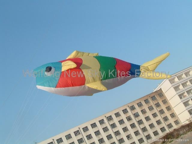 3212 Colour fish ( 5M long )