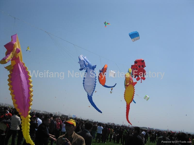 Our kites in Weifang kite festival 2009