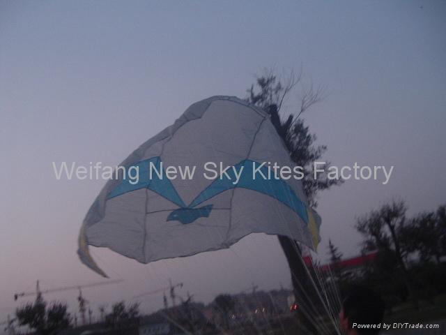 3465 NASA風箏