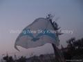 3465 Nasa kite
