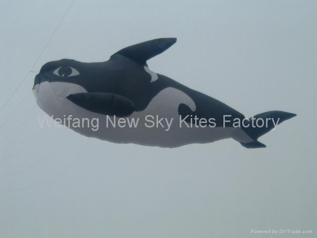 3208虎鲸 2