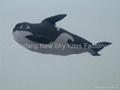 3208虎鲸