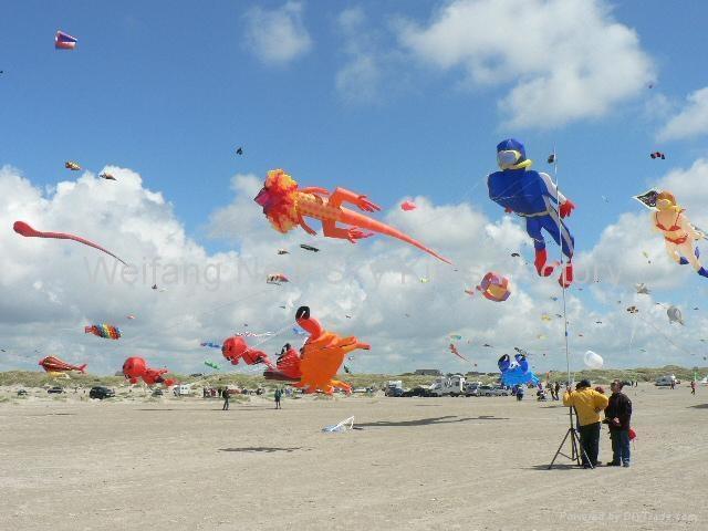 Denmark kite festival 2009