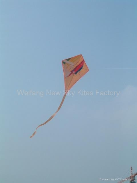 Diamond kite (55x74cm)