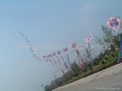 1877 Train kites