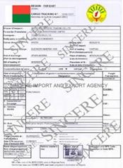 马达加斯加BSC证书