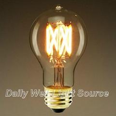 Nostalgic Filament LED Lamp : A19