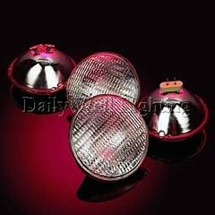 Sealed Beam Lamp PAR56