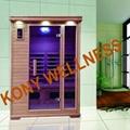 Combined heater dry sauna