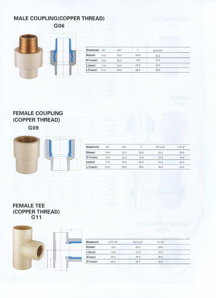 CPVC ASTM2846 热水管件 2