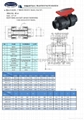 CPVC/PP/UPVC TRUE UNION  BALL VALVE(Chemical resistance) 2