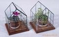 玻璃花房 1
