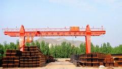 mg double beam gantry cranes