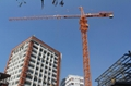 China crane tower supplier sales the