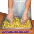 Cast Poly CPE Glove