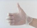 Disposable Vinyl Gloves-powder free, DEHP FREE clear