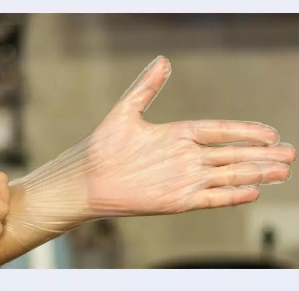 Disposable Plastic TPE Gloves  5