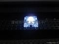 3MM白色食人鱼LED发光二极
