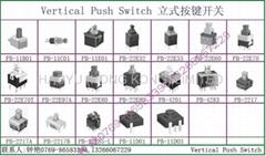 Push Switch (1-3)