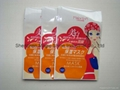 laminated pouch bag 2