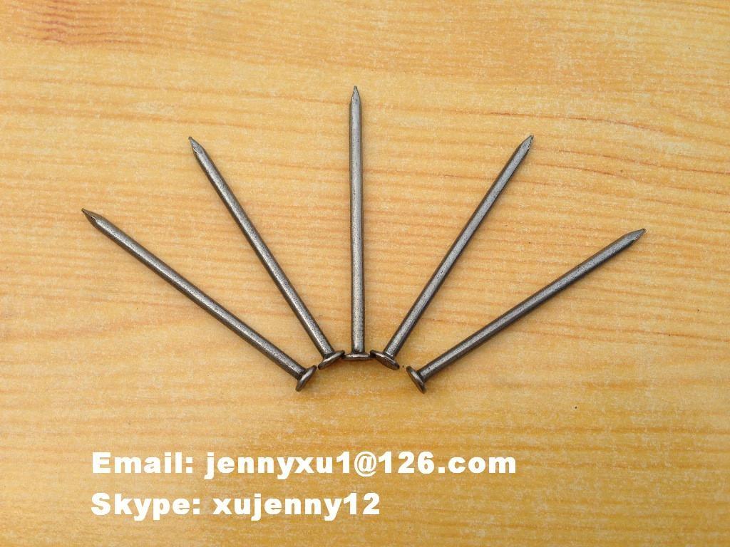 common nail 2