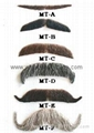 Eyebrow and Moustaches