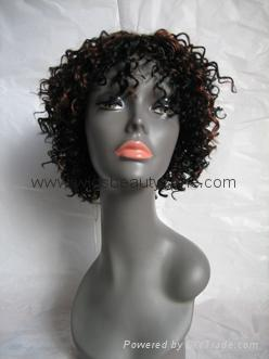 Synthetic Short Wig 2