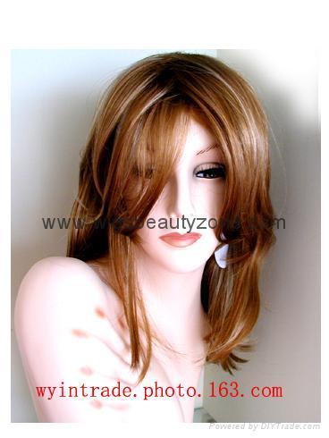 Human hair wigs 4