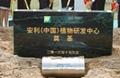 惠州奠基石供应商,香港奠基石,香港奠基石厂家,香港奠基石供应商