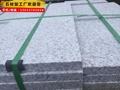 廠家直銷路沿石 市政道路高速馬路工程石材切工定製