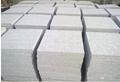 加工類型   主要有分為:平面板鋪地石、磨砂亞光鋪地石、毛面鋪地石、機刨條紋石