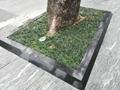 市政優質工程樹圍石 樹池石 樹