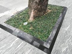 市政優質工程樹圍石 樹池石 樹坑石加厚耐用型