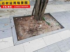 优质圆弧形树围石 树边石 树池石 加厚耐用型