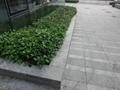 深圳市政路沿石廠生產各種規格S