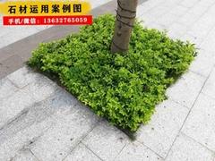 深圳市政路沿石廠生產各種規格平沿石 平緣石