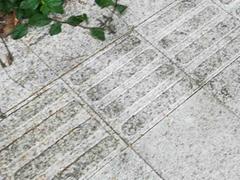 盲道石材价格 盲道石加工设备 盲道石材规格 芝麻白花岗岩盲道石